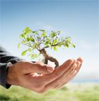 biodiesel-thumb